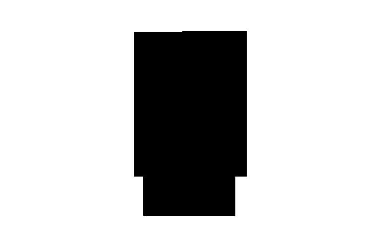 ames-hotel-logo-black-f